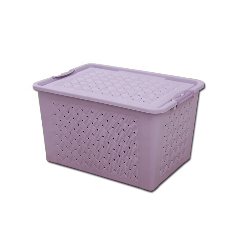 China Hot Saling 25L Plastic Storage Box with Multiple Functions
